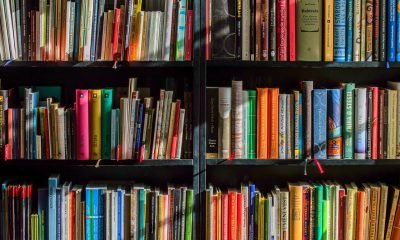 Fiction novels image