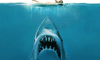Jaws shark image